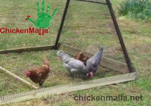 Proteccion con malla gallinera
