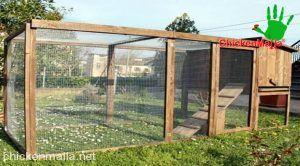 Corral para aves domésticas dentro de propiedad privada con espacio reducido.